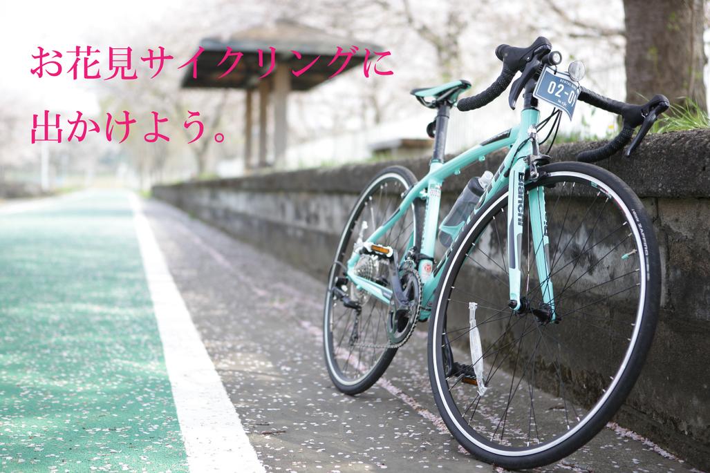 这个春天去赏花骑自行车吧!